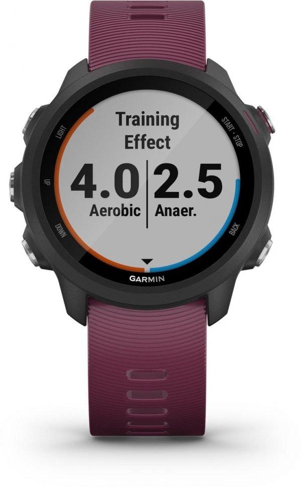 Garmin Forerunner 245 - GPS Smartwatch - 42 mm - Merlot